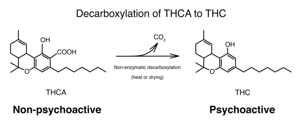 decarboxylation of thca to thc