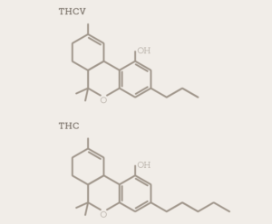 Molecular Structure Comparison of THCV and THC