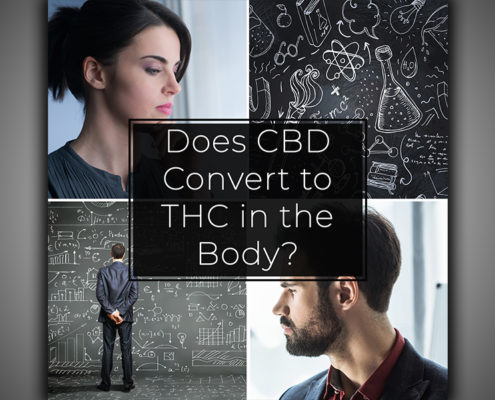 Does CBD Convert to THC in the Body
